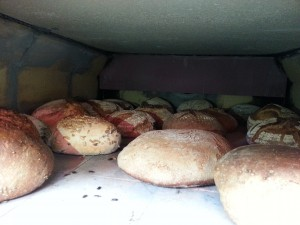 Nahaufnahme der Brote im Backhaus während dem Backen